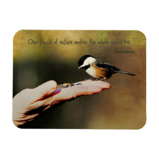 Un pájaro en la mano imanes