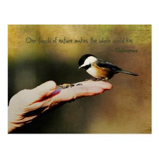 Un pájaro en la mano tarjeta postal