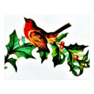 Un pájaro en la rama de árbol de navidad que mira  tarjetas postales