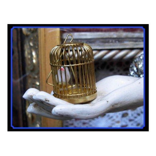 Un pájaro en una jaula tarjeta postal