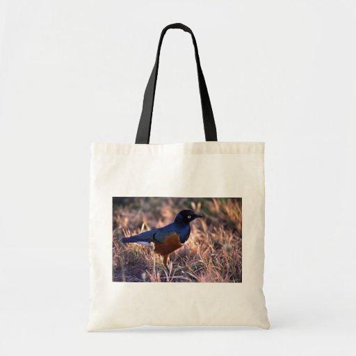 Un pájaro irradia el azul en el sol de la mañana bolsa de mano