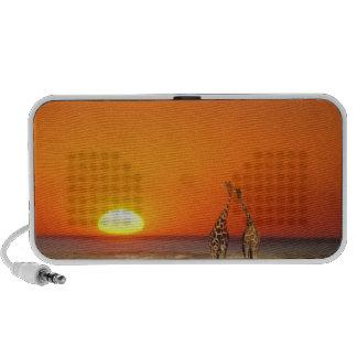 Un par de la jirafa camina en la puesta del sol, a notebook altavoz