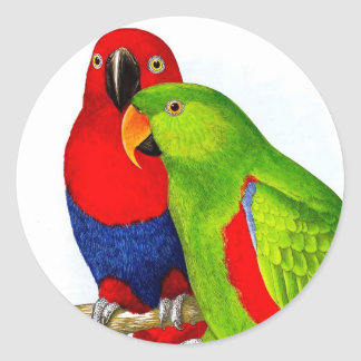 Un par de pájaros del amor de los loros pegatina redonda