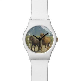Un par de potros del islandés de Brown Relojes