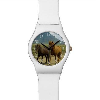 Un par de potros del islandés de Brown Relojes De Mano
