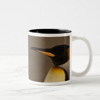 Un par de rey pingüinos (Aptenodytes P. Taza De Café