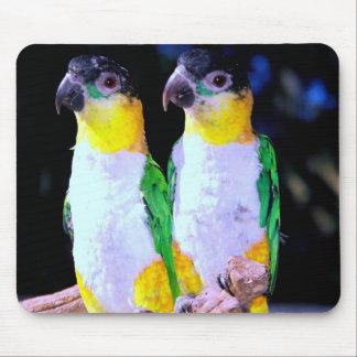 Un par feliz mouse pads