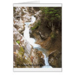 Un parque nacional más lluvioso del Mt de la natur Tarjeton