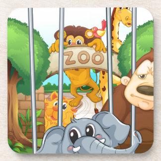 un parque zoológico y los animales posavasos