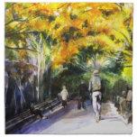 Un paseo a través de la servilleta del parque