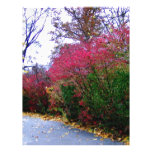 Un paseo de la tarde del otoño membrete personalizado