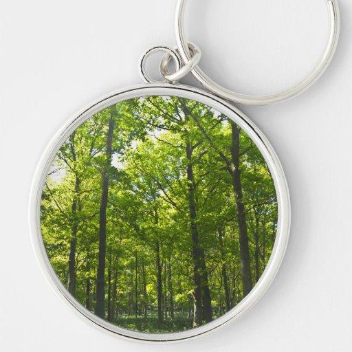 Un paseo del bosque llavero redondo plateado