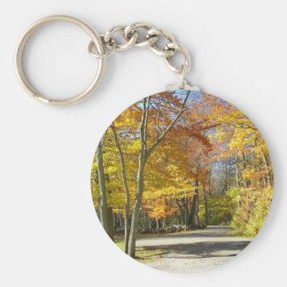 Un paseo en el parque llavero redondo tipo pin
