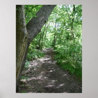 Un paseo en las maderas poster