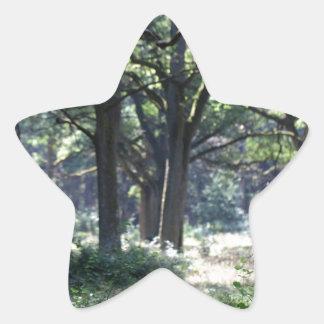 Un pasto de madera histórico con los árboles de pegatina en forma de estrella