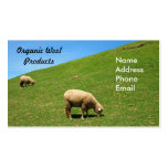 Un pasto verde enorme con dos ovejas que pastan tarjetas de visita