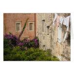 Un patio trasero en Dubrovnik Felicitacion
