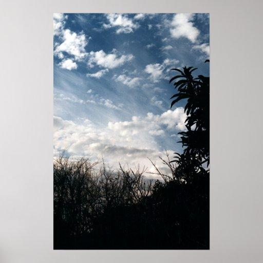 un patio trasero nublado posters