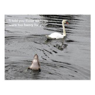 Un pato demasiado pesado por arriba postales