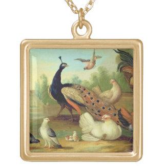 Un pavo real, palomas, pollos y un Jay en un parqu Joyerias Personalizadas