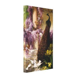 Un pavo real y palomas en una lona envuelta jardín lienzo envuelto para galerías