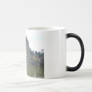 Un pedazo de taza del asilo