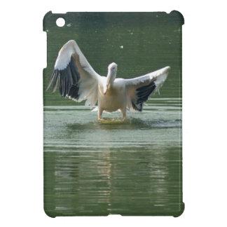 Un pelícano que seca sus alas