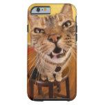 Un pequeño gato chistoso se sienta en un taburete funda resistente iPhone 6