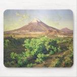 Un pequeño volcán en el campo mexicano, 1887 (acei tapetes de raton