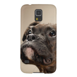 Un perrito Brindle del boxeador que mira para arri Fundas Para Galaxy S5
