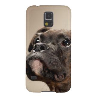 Un perrito Brindle del boxeador que mira para Funda Galaxy S5
