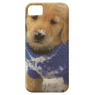 un perrito de oro del laboratorio en el caso del funda para iPhone 5 barely there
