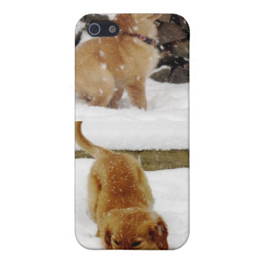 Un perrito feliz iPhone 5 cárcasa