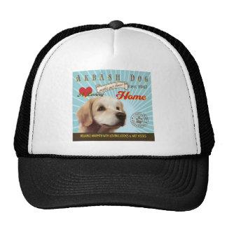 Un perro cariñoso de Akbash hace nuestro hogar de  Gorra