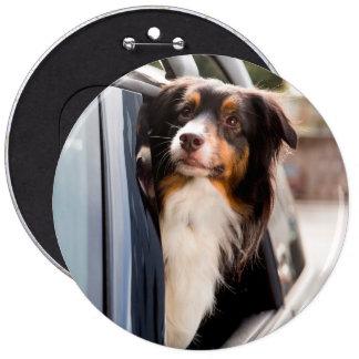 Un perro con su cabeza fuera de una ventanilla del pin redondo 15 cm