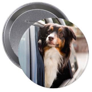 Un perro con su cabeza fuera de una ventanilla del pin redondo 10 cm