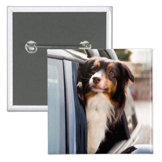 Un perro con su cabeza fuera de una ventanilla del pin cuadrada 5 cm