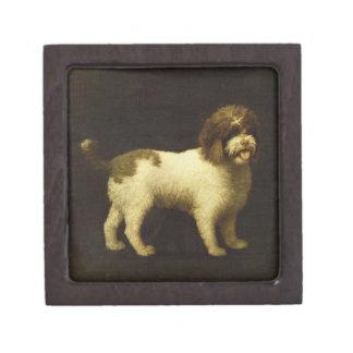 Un perro de aguas de agua, 1769 (aceite en lona) caja de recuerdo de calidad