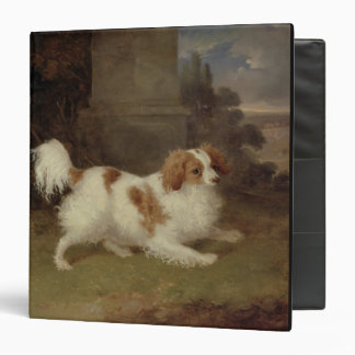Un perro de aguas de Blenheim, c.1820-30 (aceite e
