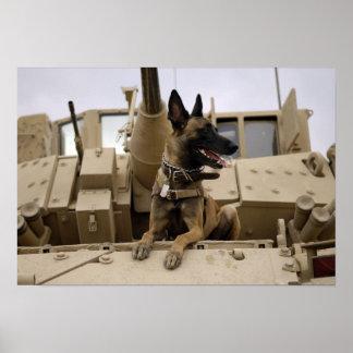 Un perro de trabajo militar se sienta en un M2A3 Póster