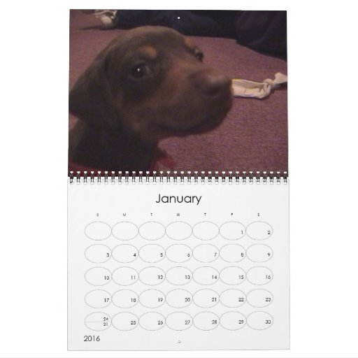 Un perro del bebé, un perro 2007 del bebé calendarios de pared