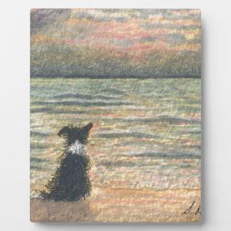 Un perro del border collie dice hola a la mañana placas de plastico