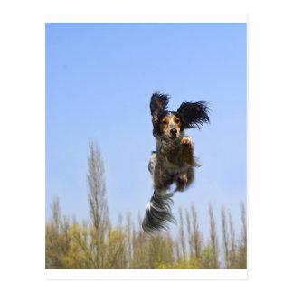 ¡Un perro del vuelo! Postal