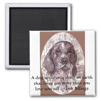 Un perro es el imán 2