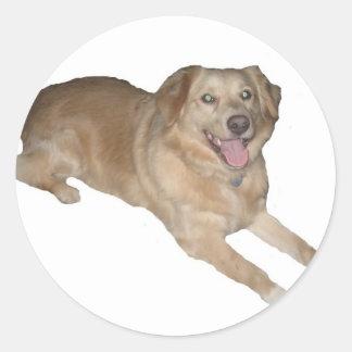 ¡Un perro feliz! Pegatina Redonda