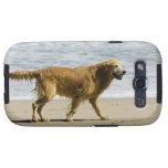 Un perro mojado en la playa samsung galaxy s3 protector