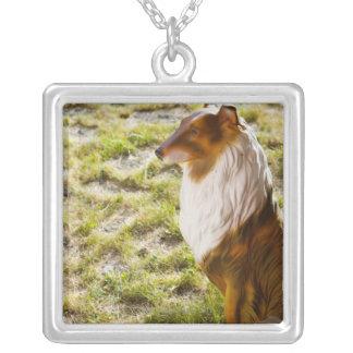 Un perro plástico en un jardín collar plateado