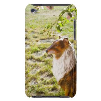 Un perro plástico en un jardín cubierta para iPod de barely there