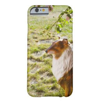 Un perro plástico en un jardín funda barely there iPhone 6