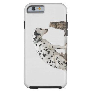 Un perro que mira un gato funda para iPhone 6 tough